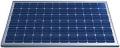 Fotovoltaický panel 260W/30V polykrištál Amerisolar